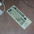 CC-NikoFrag2001_800_069.jpg