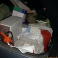 CC-NikoFrag2001_800_112.jpg